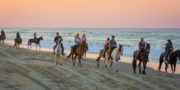 Virginia Beach & Outer Banks Horseback