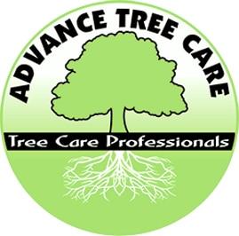 Advance Tree Care