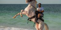 Fall Horseback Riding in Virginia Beach