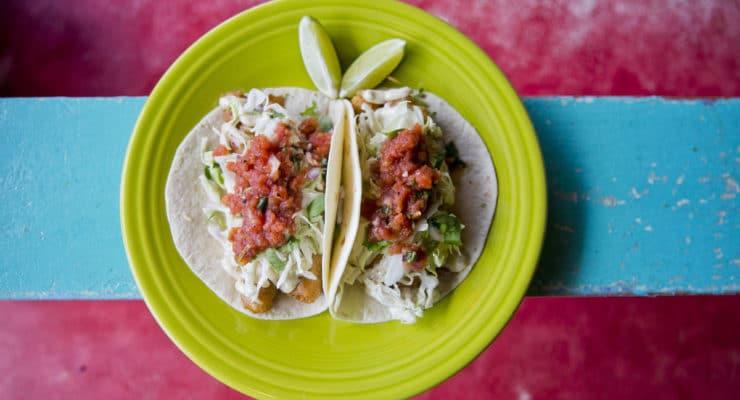 Gringo's Fish Tacos