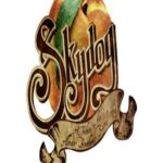 Event - Skydog: A Tribute To The Allman Brothers Band at Elevation 27
